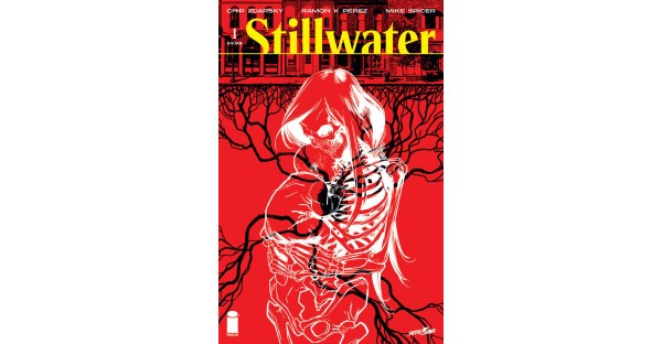 GIDEON FALLS MEETS THE WALKING DEAD IN CHIP ZDARSKY AND RAMÓN K. PÉREZ'S CHILLING NEW SKYBOUND HORROR SERIES, STILLWATER