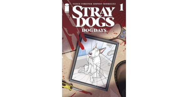 A NEW LITTER OF STRAY DOGS ARRIVES THIS DECEMBER IN UPCOMING DOG DAYS